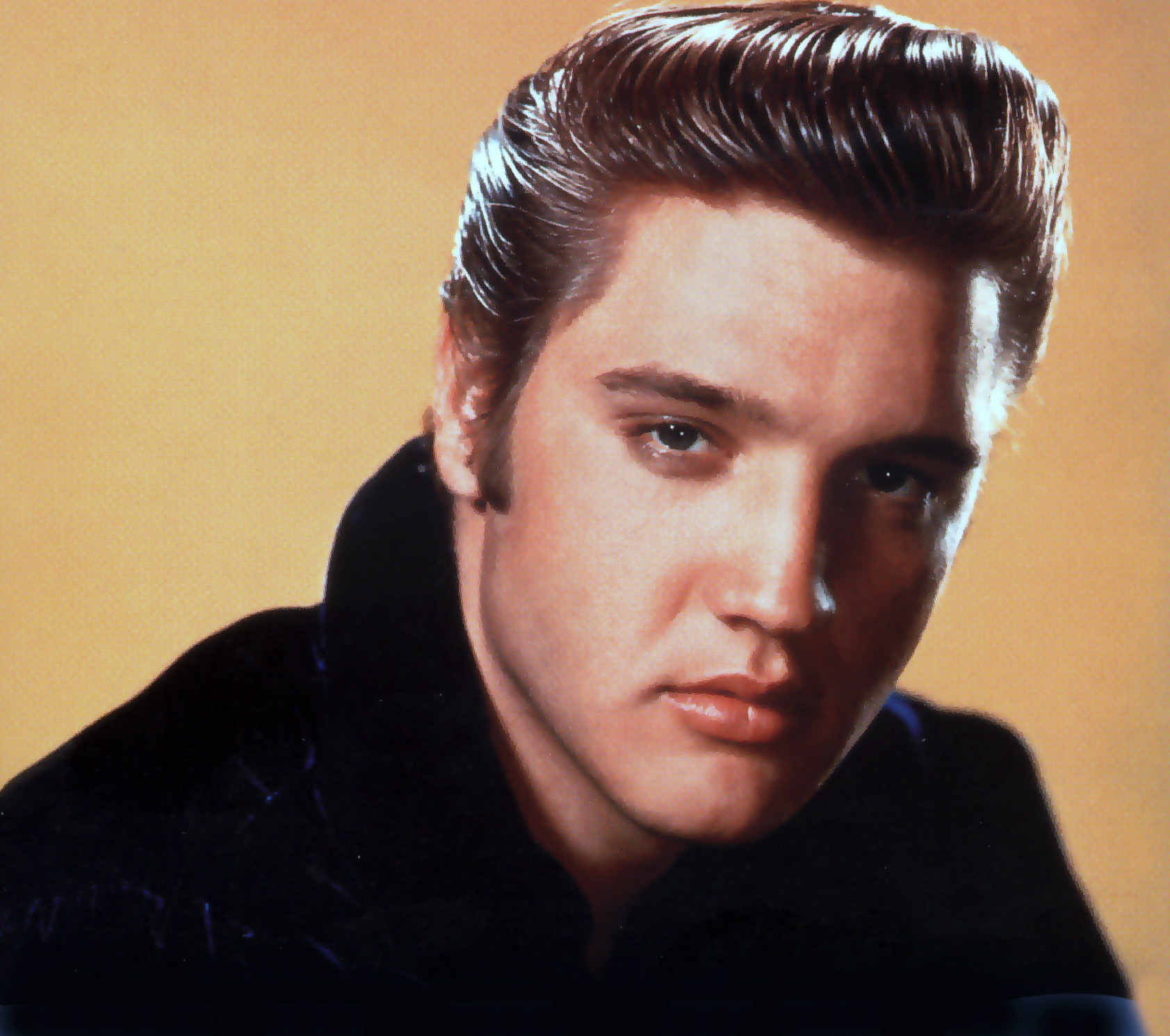 Elvis presley il re del rock and roll